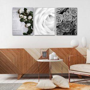 Bộ 3 tranh hoa hồng trắng đen CV03130