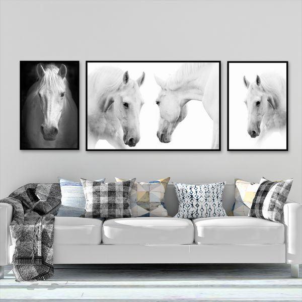 Bộ 3 tranh ngựa trắng CV0389