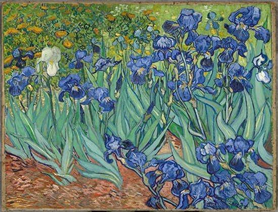 tranh sơn dầu phong cảnh đồng hoa IRISES