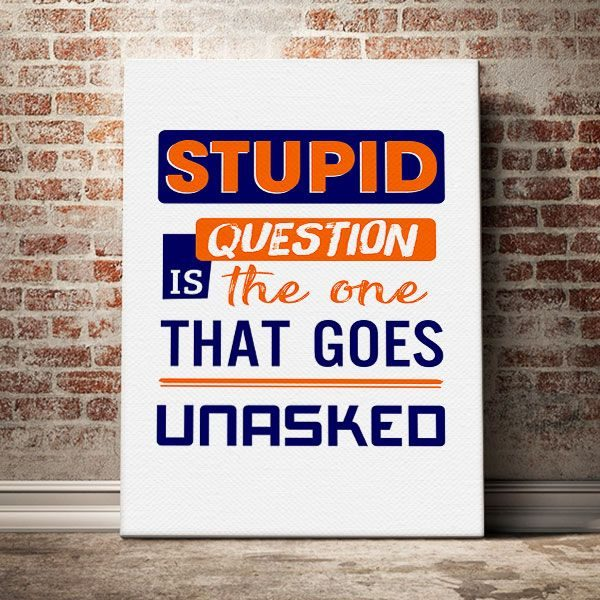 Stupid-question-is-the-one-that-goes-unasked
