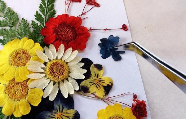 Hạn chế di chuyển hoa khô sau khi đã gắn lên giấy